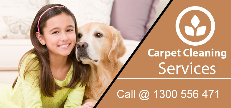 Affordable Carpet Cleaning Hopkins Creek