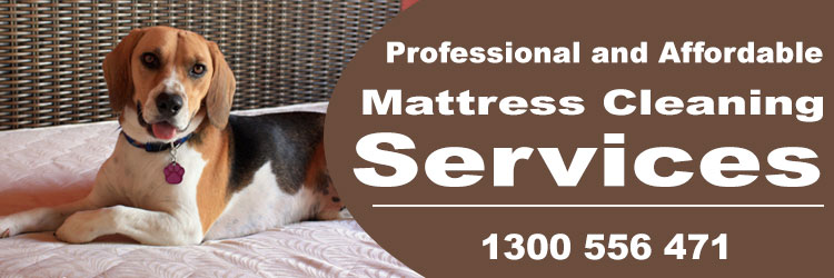 Mattress Cleaning Duroby