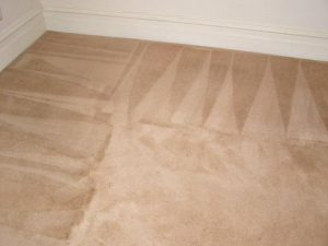 Carpet Cleaning Services Research