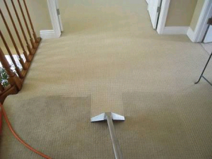 Stairs Carpet Cleaning Mount White
