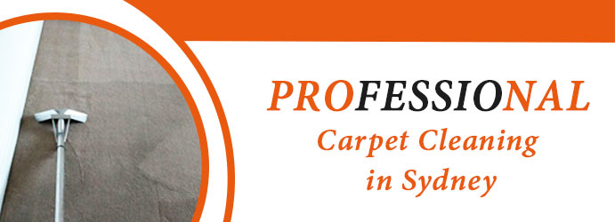 Professional Carpet Cleaning Mount White