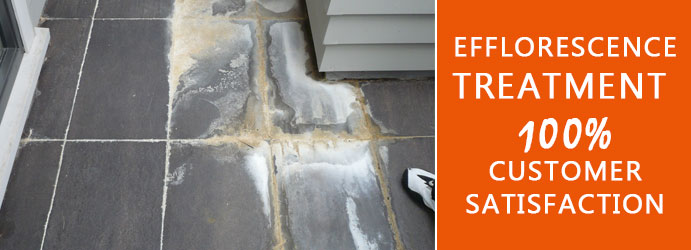 Efflorescence Treatment Ipswich