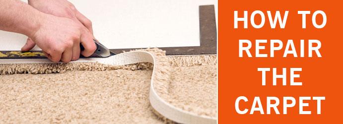 How to Repair the Carpet Brisbane