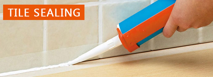 Tile Sealing Robina