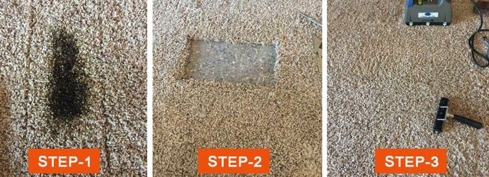 Carpet Mould Restoration Springfield Central