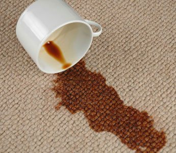 Carpet Stain Removal North Maleny