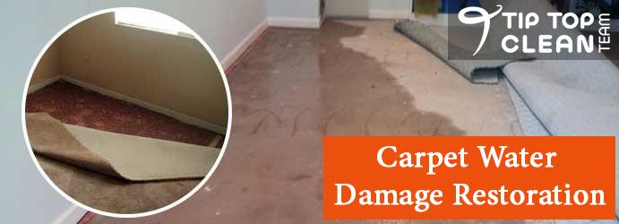 Carpet Water Damage Restoration Westbrook