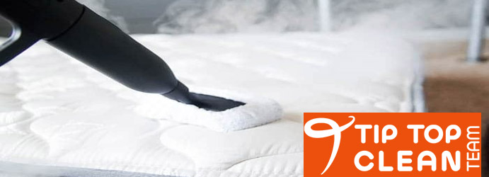 Mattress Steam Cleaning Cotton Tree
