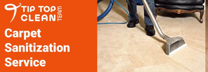 Carpet Sanitization Service