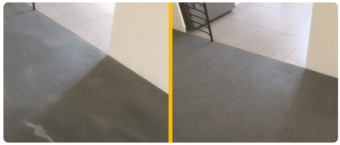 How to Spot the Best Carpet Cleaning Services